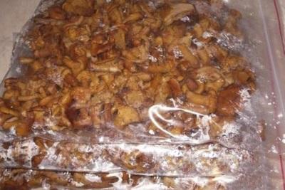 Замораживание грибов лисичек