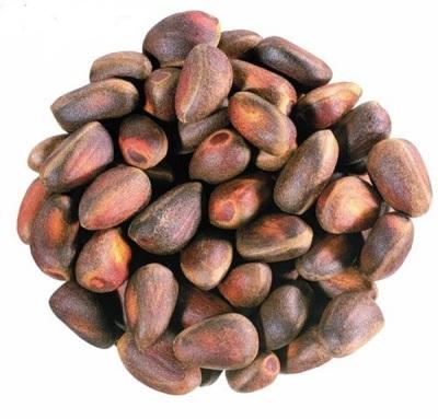 Признаки хорошего кедрового орешка