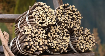 Противопоказания и вред солодки