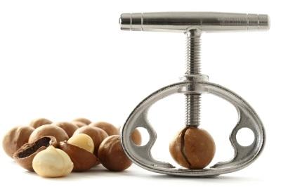 Ядра и орехи макадамия