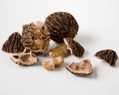 Черный орех состоит из множества нужных для организма микроэлементов