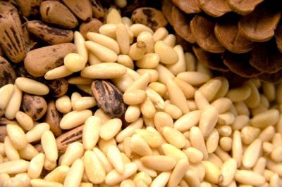 Правильное хранение орехов пинии