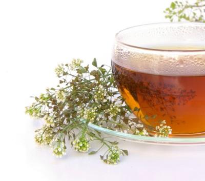 Чай для очистки крови с пастушьей сумкой