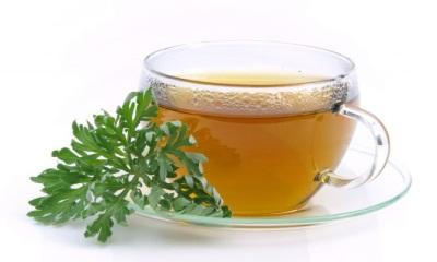 Чай полыни обыкновенной для похудения