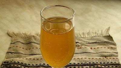 Чайный гриб популярен в похудении