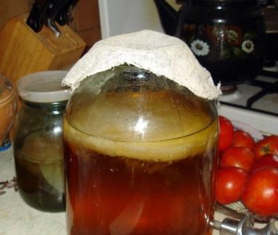 Напиток чайного гриба используют для лечения домашнего скота и птицы