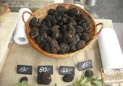 Стоимость грибов трюфелей