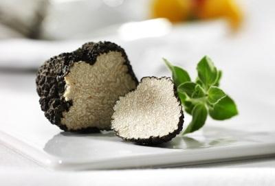 Трюфели имеют ценный химический состав