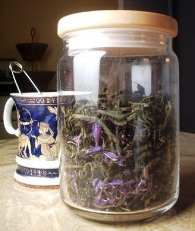 Вред и противопоказания иван-чая