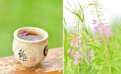 Масло иван-чая