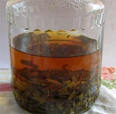 Иван-чай в мдицине