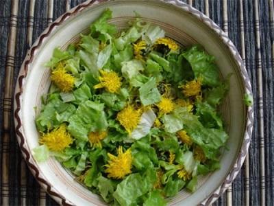 Весенний салат с мать-и-мачехой