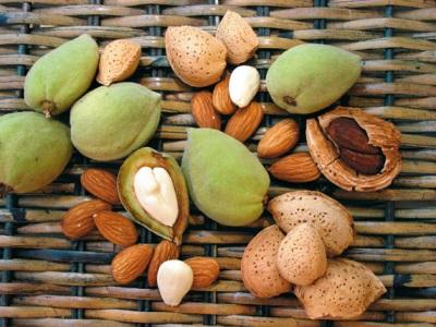 Миндаль богат множеством витаминов и минералов