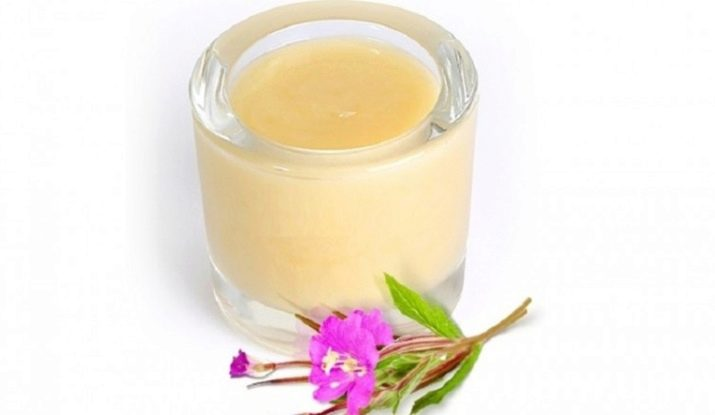 Каким полезными свойствами обладает мед из кипрея и какими противопоказаниями?