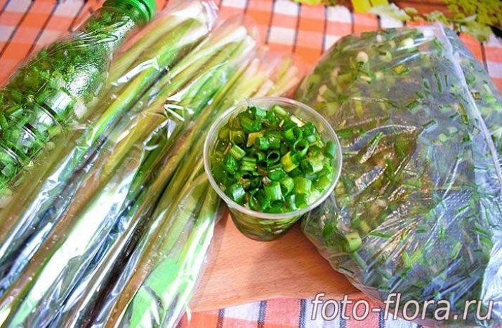 Зеленый лук как сохранить рецепт