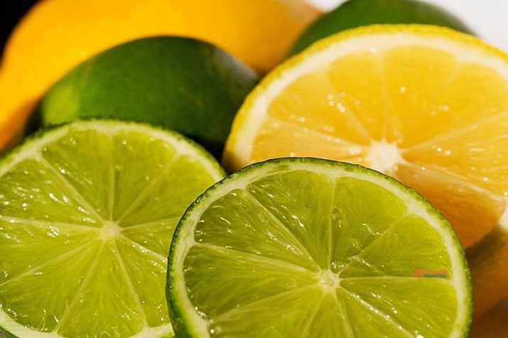 Лайм и лимон в чем разница