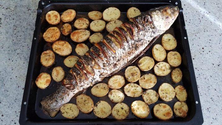 Запеченная кефаль: рецепты приготовления в духовке